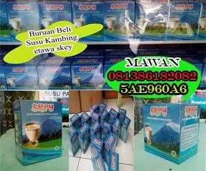 Jual Susu Kambing Aceh