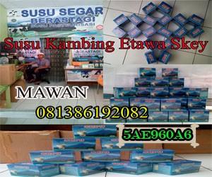 Jual Susu Kambing Medan