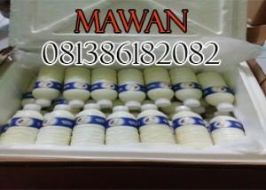 Susu Etawa Murni Medan
